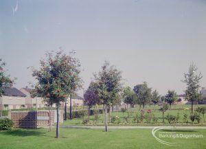 Grounds of John Preston School, Rose Lane, Marks Gate, 1971