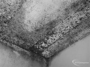 Public Health, showing effects of condensation at 161 Church Elm Lane, Dagenham, 1972