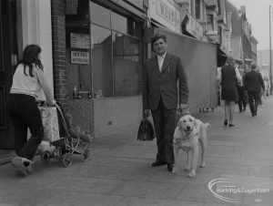 Welfare for the Blind, showing the blind organiser at Aldis House, Barking walking with his guide dog in Ripple Road, 1973