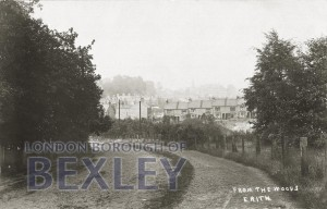 PCD_549 From the Woods, Erith 1909