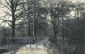 PCD_634 Dane Walk, Joydens Wood, Bexley 1908