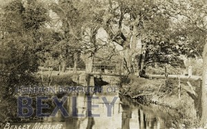 PCD_66 Bexley Marshes 1906