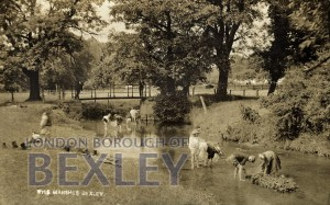 PCD_67 The Marshes, Bexley 1914
