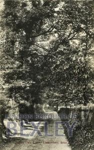 PCD_676 Burnt Oak Lane, Lamorbey, near Sidcup 1903