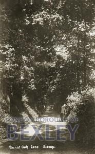 PCD_677 Burnt Oak Lane, Sidcup 1918