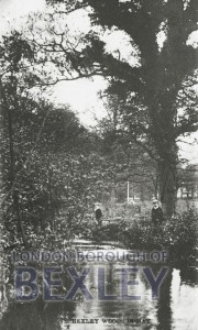 PCD_68 Bexley Woods in May 1911