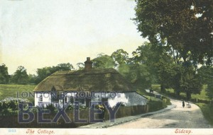 PCD_879 The Cottage, Sidcup 1904