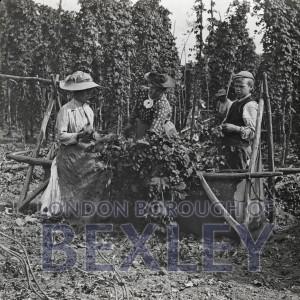 PHBOS_2_536 Hop picking, Hurst Farm, Bexleyc1895