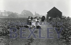 PHBOS_2_574 Pincott Fields, Pincott Road , Bexleyheath 1897