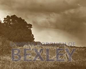 PHBOS_2_585 Bexley wheat field c1900