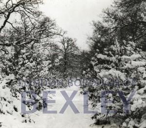 PHBOS_2_600 Bexley Wood, Bexleyc1910
