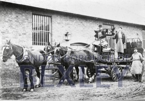 PHBOS_2_606 'Lyles' and horse dray, Crayfordc.1890