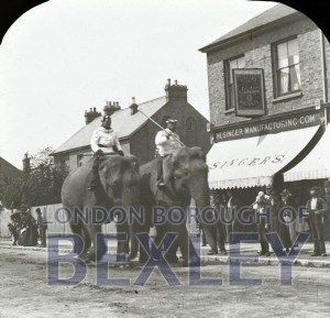 PHBOS_2_871 Broadway, Bexleyheath. Circus parade c1900