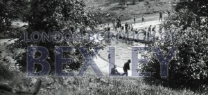 PHBOS_2_922 Martens Grove Recreation Ground's pool opening1933
