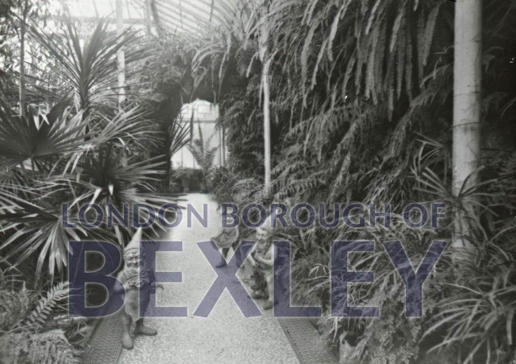Winter garden Martens Grove 1896