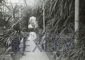 PHBOS_2_995 Winter garden Martens Grove 1896