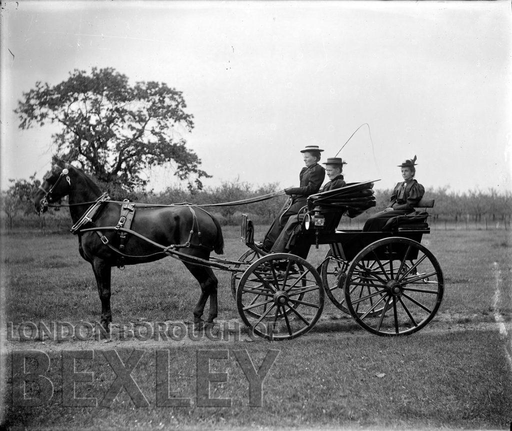 Three Ladies on Horse & Carriage c.1900