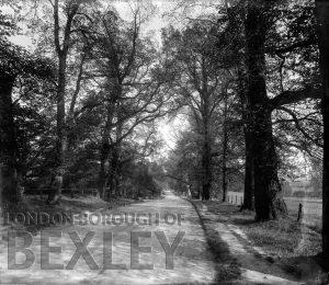 DEW026 Frognal Avenue, Sidcup c.1900
