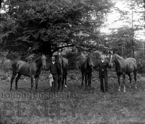 DEW037 Horses and Grooms c.1900