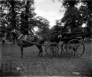 DEW051 Demi-Mail Phaeton (Sportiing Carriage) with Lady Driver c.1900