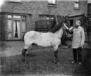 DEW052 Gentleman with a Horse c.1900