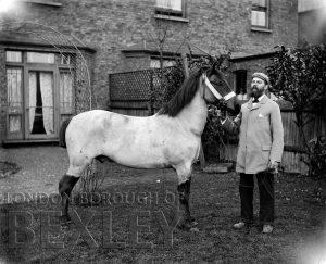 DEW053 Gentleman with Horse c.1900