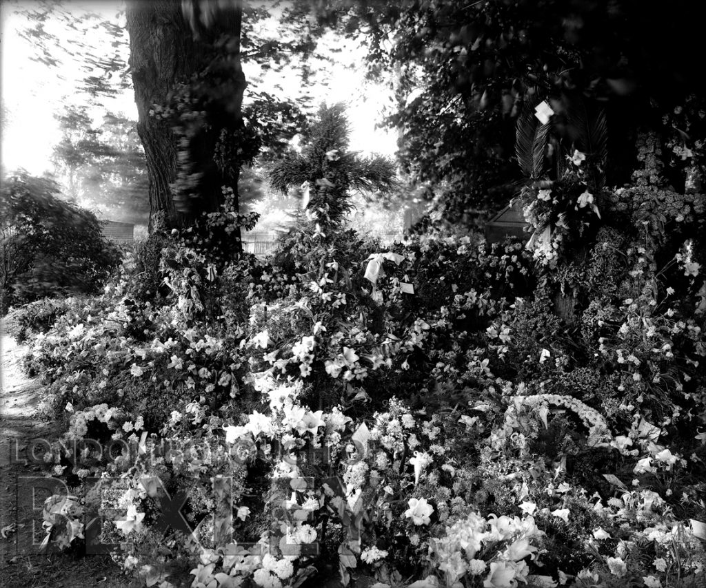 A Flower Bed c.1900