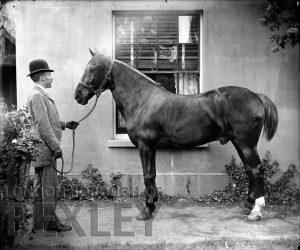 DEW121 Gentleman with Horse c.1900