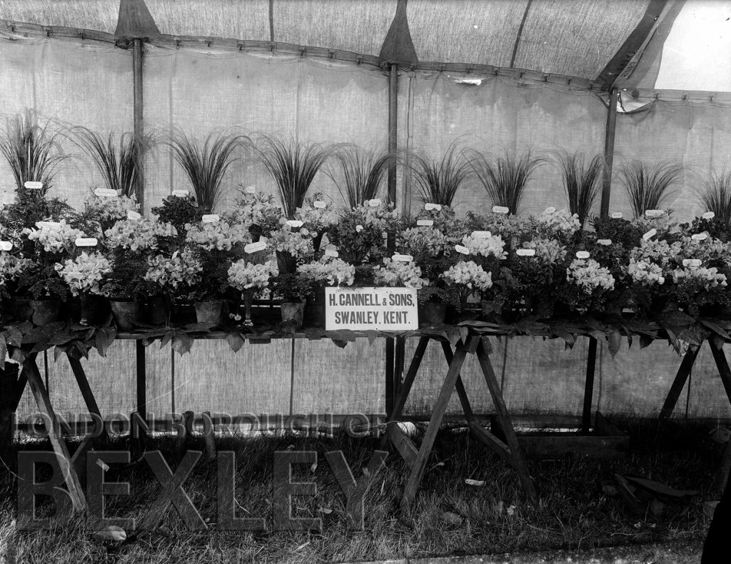 Sidcup & District Horticultural Show 1898