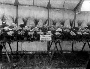 DEW159 Sidcup & District Horticultural Show 1898