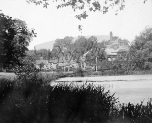 Westerham ales and pond, Westerham undated
