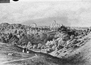 General view of Crystal Palace after erection, Crystal Palace 1850s