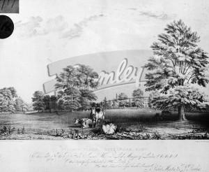 Village Place general view, Beckenham 1838