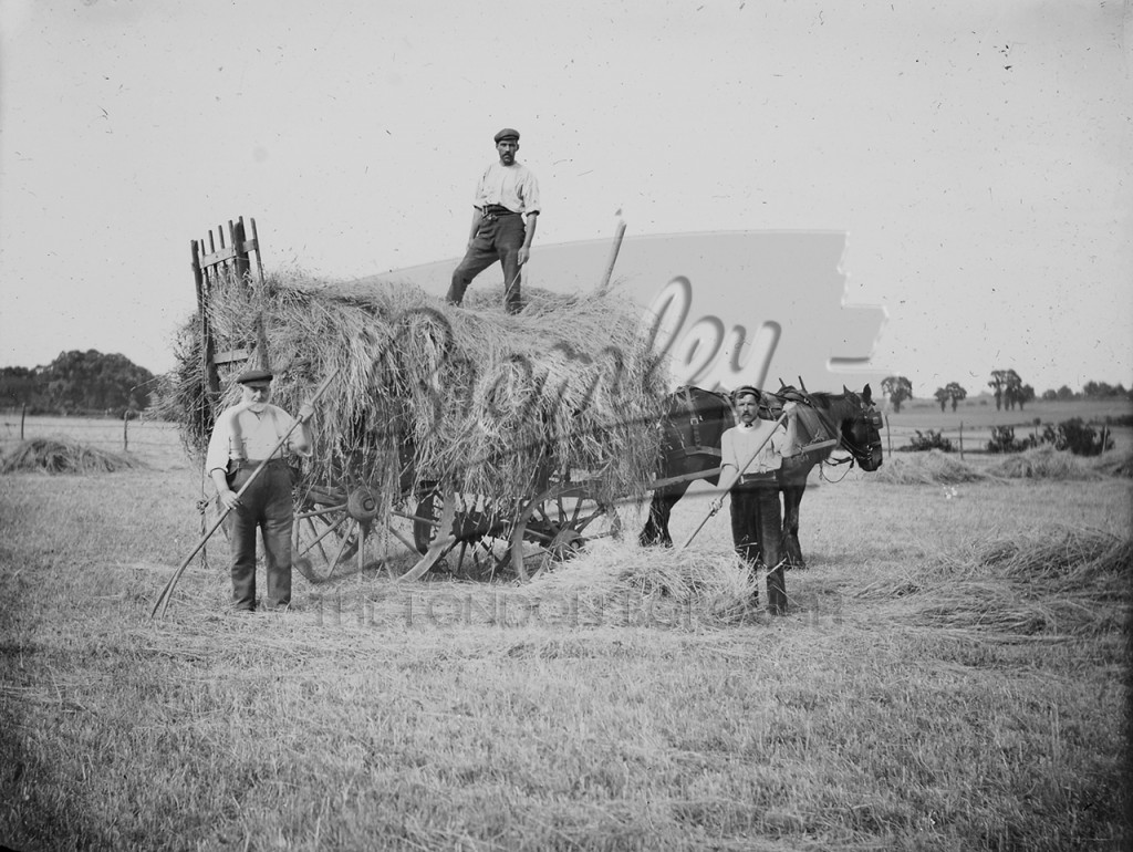 Farmers on the Knoll Estate, Orpington, Orpington
