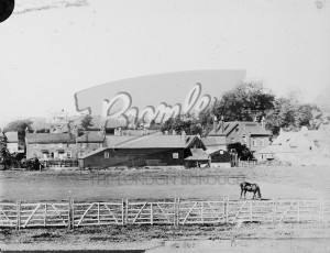 Winters Farm, Orpington 1905