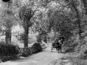 Lane to Kevingtown, St Mary Cray late 19th C