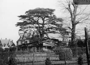 Wickham Road, Beckenham, c.1946