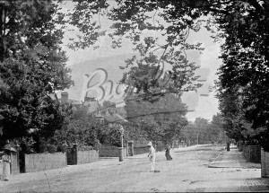 Wickham Road, Beckenham, c.1900