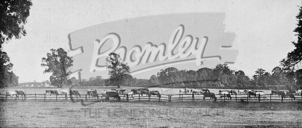 Langley Farm, Beckenham, Beckenham c.1910