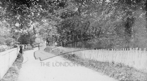 Pickhurst Lane, Hayes c.1910