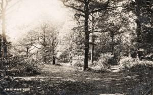 Abbey Wood, Kent