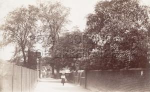 Vanbrugh Fields