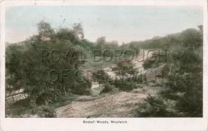 Bostall Woods