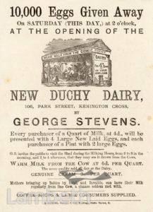 NEW DUCHY DAIRY, PARK STREET, KENNINGTON : ADVERTISEMENT
