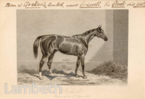 WINNER OF ST. LEGER, LANDOR ROAD, STOCKWELL