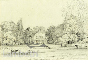 'OLD PARK', NIGHTINGALE LANE, CLAPHAM: RESIDENCE OF J.COLES