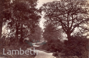 CROXTED LANE, WEST DULWICH