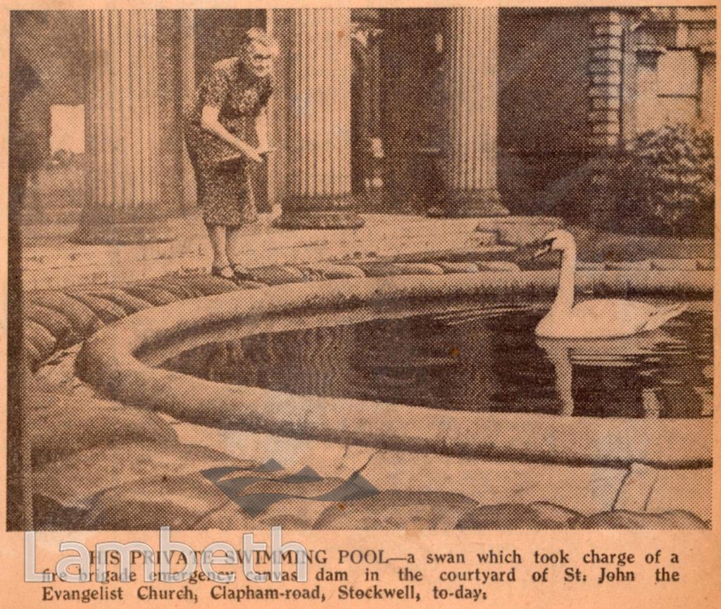 SWAN IN WATER RESERVOIR, ST JOHN'S STOCKWELL: WORLD WAR II