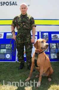BOMB DISPOSAL TEAM, COUNTRY SHOW, BROCKWELL PARK