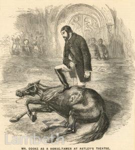 MR COOKE, HORSE TAMER, ASTLEY'S AMPHITHEATRE, LAMBETH